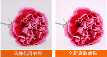 震旦ADC225硒鼓效果输出图片对比